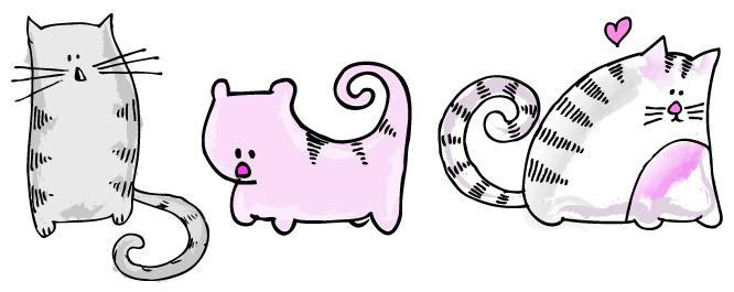 Katzenvergleichsanordnung